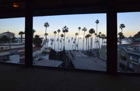Bedroom view of palm trees, marina, ocean front, and ocean